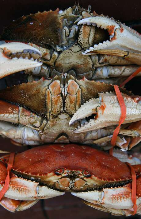 The cooked Dungeness crab for sale along Fisherman's Wharf in San Francisco comes from Washington state, with Northern California crab continuing to test too high for toxic domoic acid. Photo: Michael Macor, The Chronicle