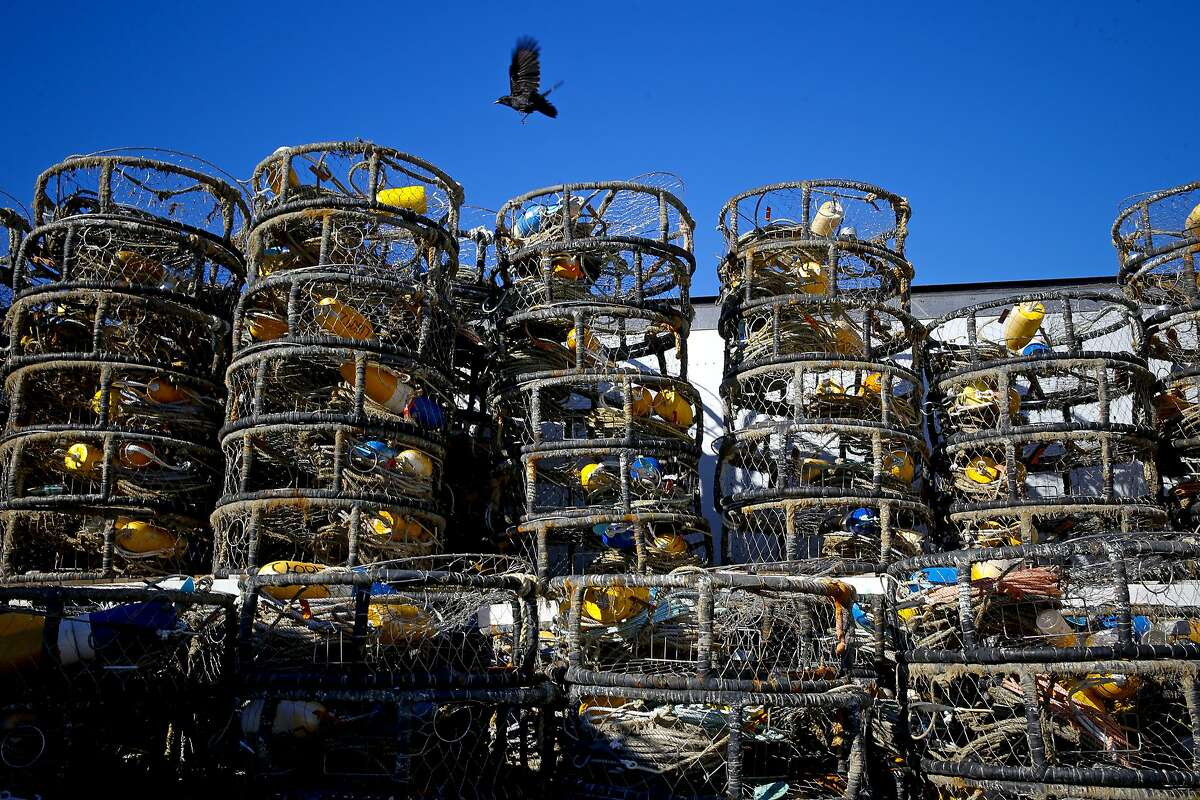 Commercial crab fisherman have their crab pots sitting idle on Pier 45 in San Francisco, Calif., on Thursday December 31, 2015, as California's commercial crab season remains closed after a neurotoxin was found in local Dungeness crab earlier this year.