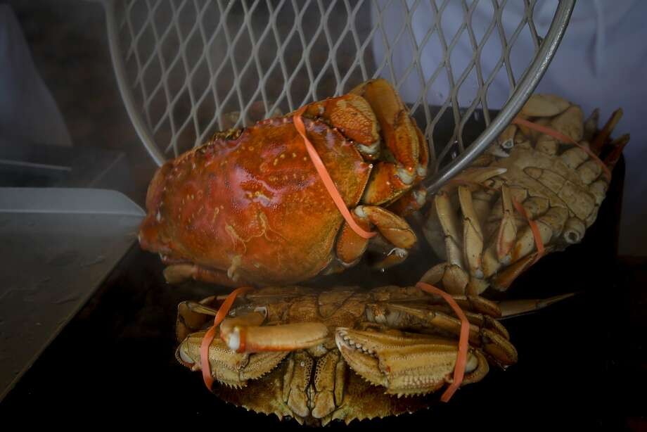 Dungeness crab at Fisherman's Wharf in San Francisco. Photo: Michael Macor, The Chronicle