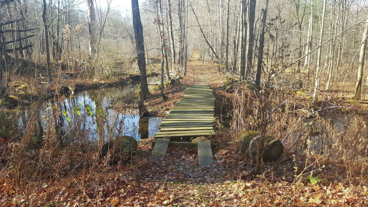 A walking trail on the Hawkwood property at the corner of Route 50 and Middle Line Road in Ballston. (From Saratoga PLAN)