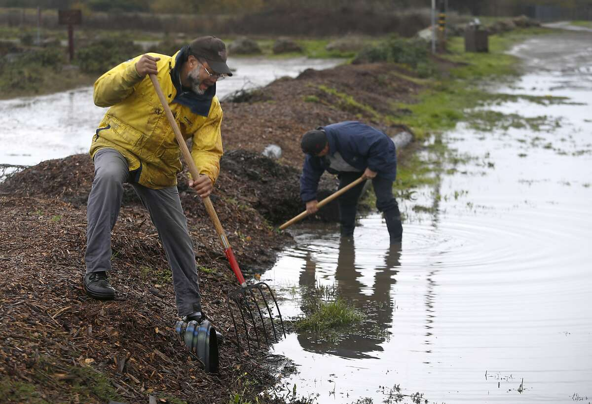 Alonzo Chess (left) and Ken Yabusaki, from the Marina division of the Berkeley Parks and Recreation department, clear storm drains to allow rain water to flow into the bay in Berkeley, Calif. on Tuesday, Jan. 5, 2016.