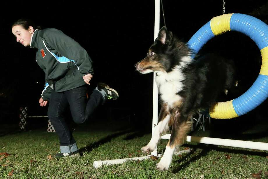 Anneka Mikel Dahle, a 15-year-old sophomore at Clemens High School, leads her dog Tucker, a 10-year-old black-tri Australian shepherd, though the tire while working on agility drills at her home on Tuesday, Dec. 29, 2015.  MARVIN PFEIFFER/ mpfeiffer@express-news.net Photo: Marvin Pfeiffer, Staff / San Antonio Express-News / Express-News 2015