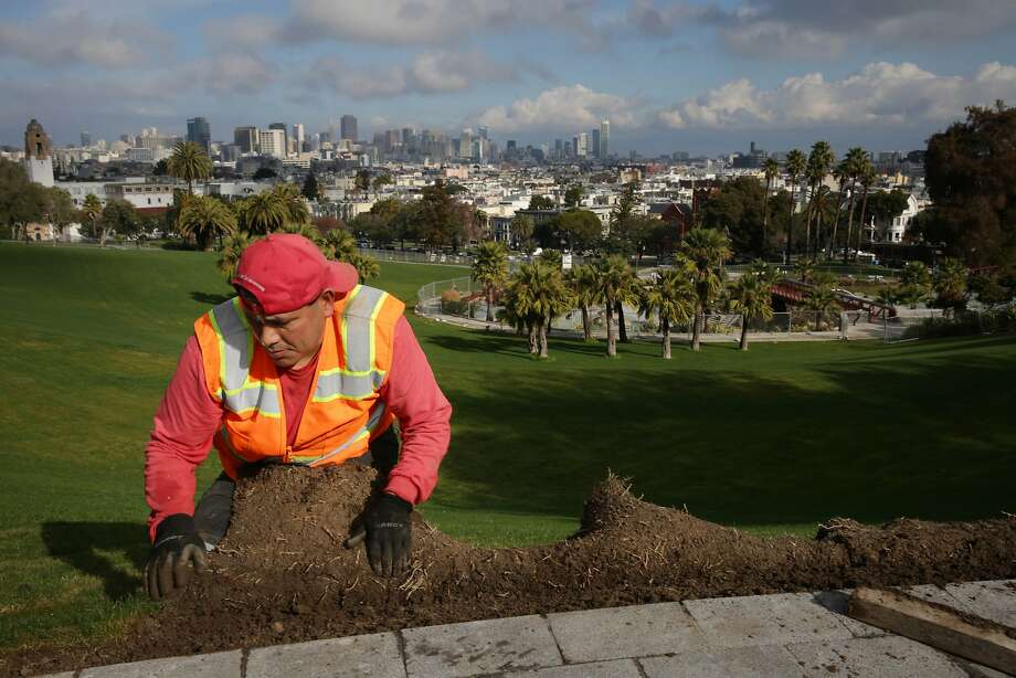 Ruben Hernandez, with Recreation and Parks Department, lays sod at the new 20th and Church Overlook  at Dolores Park on Thursday, January 7, 2015 in San Francisco, Calif. Photo: Lea Suzuki, The Chronicle