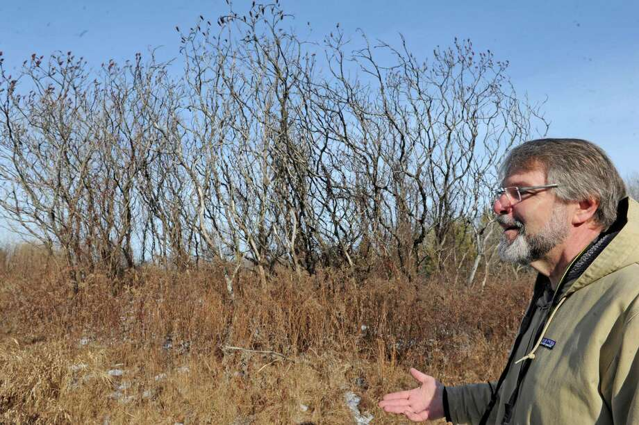 Mark King the executive director of the Mohawk-Hudson Land Conservancy tours a donated parcel of land off of River Road on Friday Jan. 8, 2016 in Latham, N.Y.  Dr. Patricia Fox has donated 70 acres to the Mohawk-Hudson Land Conservancy to keep it forever wild. (Michael P. Farrell/Times Union) Photo: Michael P. Farrell / 10034919A