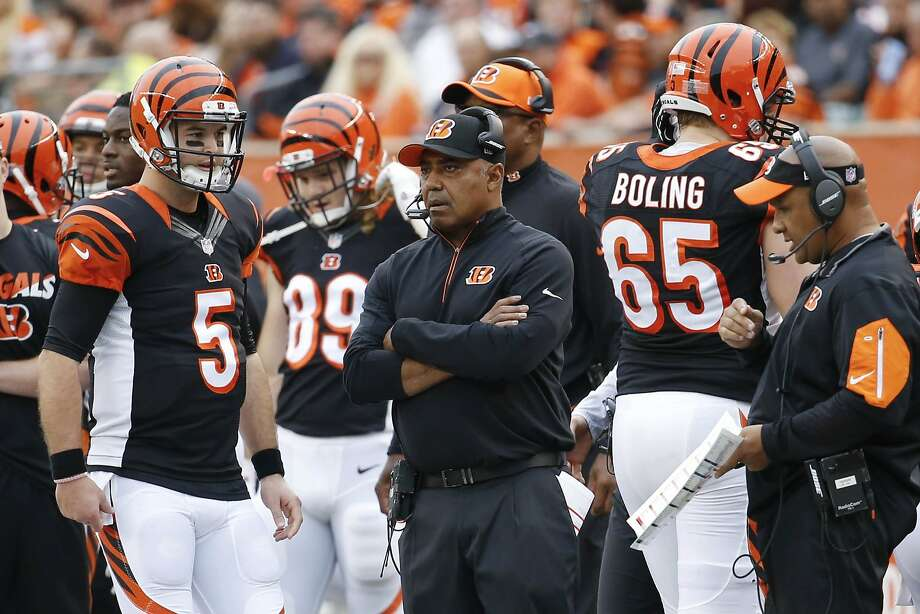 Marvin Lewis will try to get his first playoff win with AJ McCarron at quarterback instead of the injured Andy Dalton. Photo: Frank Victores, Associated Press