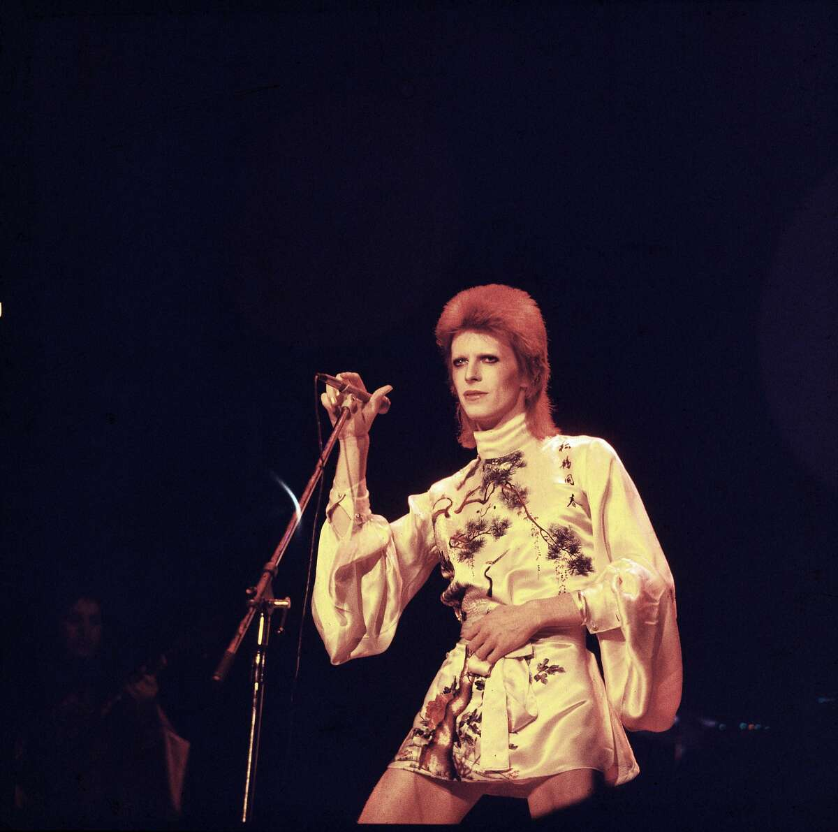 David Bowie died The 69-year-old music legend died of liver cancer in January, two days after the release of his final album,