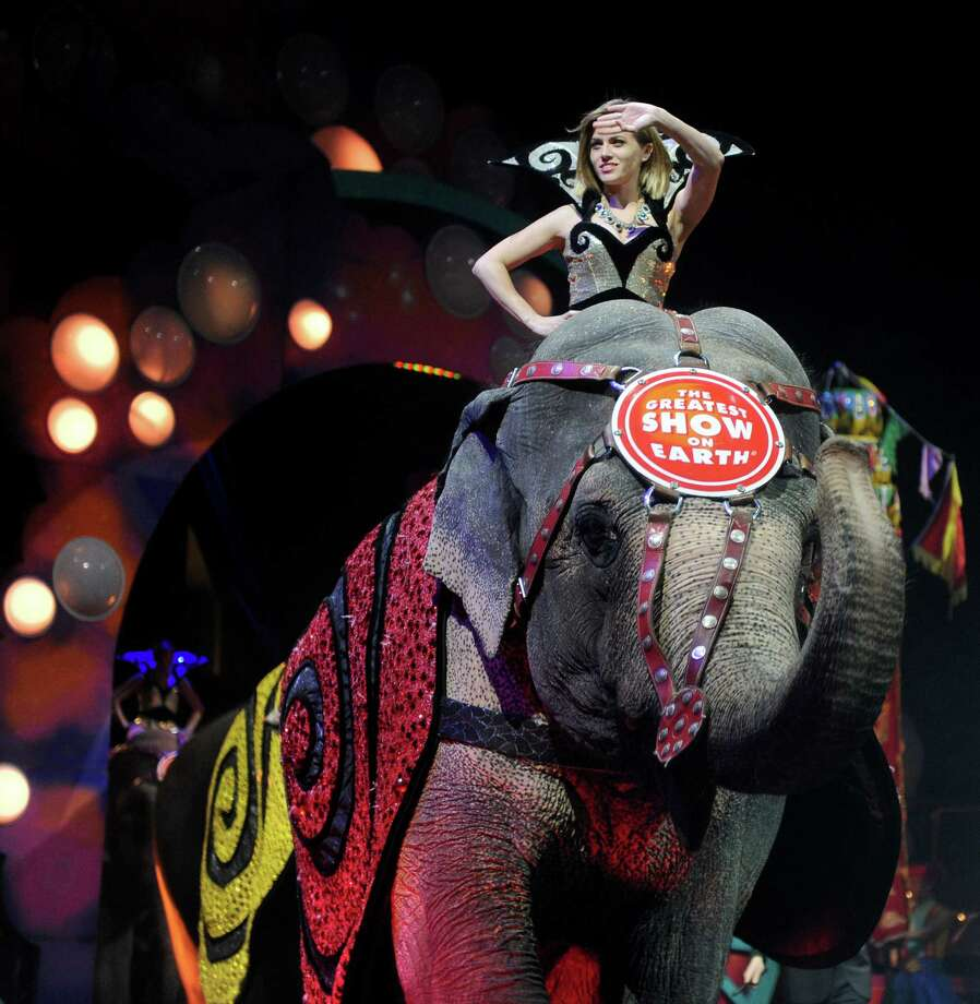 Elephants parade through the arena during the Ringling Brothers and Barnum and Bailey circus at the Arena at Harbor Yard in 2010. On Saturday, Jan. 15, 2017 officials of the company that owns the Ringling Bros. and Barnum & Bailey Circus announced that it will close in May, ending a 146-year run. Fans and animal rights activists offer a stark difference of opinion. Photo: Hearst Connecticut Media File Photo / Connecticut Post