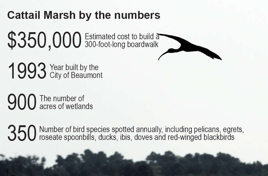 Cattail Marsh by the numbers Photo: Enterprise Staff