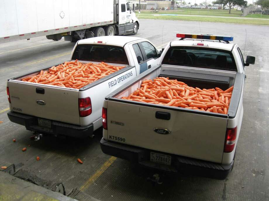 Border agents discovered 2,817 packages of pot, which CBP officials say carries an estimated street value of $500,000, in this shipment of carrots intercepted at the Pharr International Bridge on Jan. 10, 2016. Photo: CBP/courtesy
