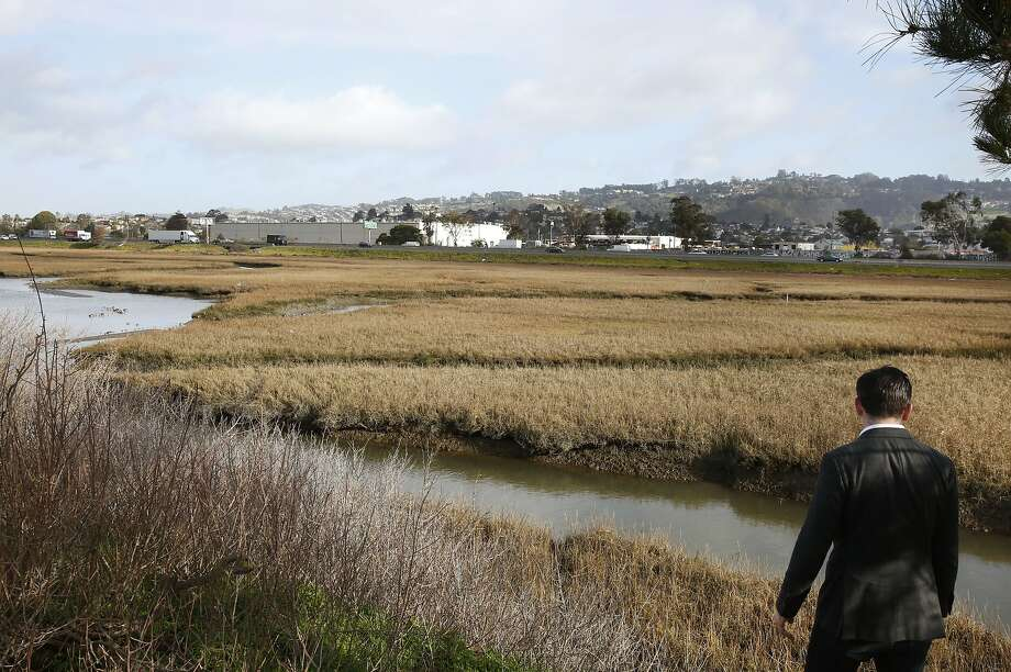 Adrian Covert, a policy director for the Bay Area Council pictured next to wetlands he wants restored near Point Isabel Regional Shoreline Jan. 13, 2015 in Richmond, Calif. A proposed ballot measure in all nine Bay Area counties would pay for major restoration in wetlands and coastal ecosystems of the San Francisco Bay, including the wetlands near Point Isabel Regional Shoreline in Richmond. Photo: Leah Millis, The Chronicle