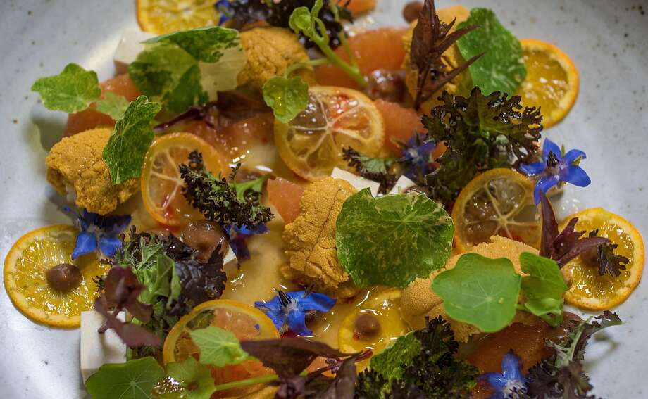 The Sea Urchin and Citrus at the Shed in Healdsburg, Calif., is seen on Thursday, January 14th, 2014. Photo: John Storey