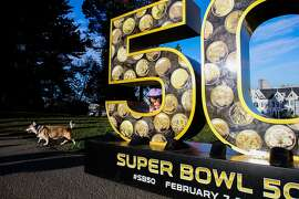 """Olivia Cunningham, 4, and her dog Gaigho (left) spend time exploring a sculpture of the number """"50"""", which is one of ten that have been installed across the city for the Super Bowl, in Alamo Square Park, in San Francisco, California on Friday, January 15, 2016."""
