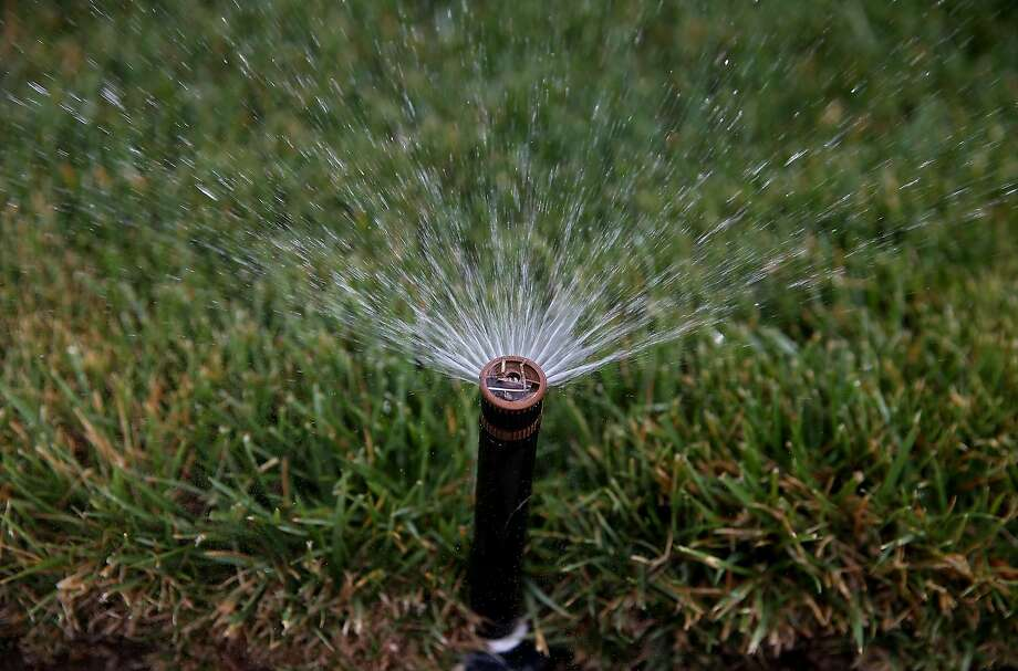 A sprinkler waters a lawn on April 7, 2015 in Walnut Creek, California.  As California enters its fourth year of severe drought, EBMUD and water districts throughout the state are assisting customers with finding ways to reduce water use at their homes. California residents are facing a mandatory 25 percent reduction in water use. Photo: Justin Sullivan, Getty Images