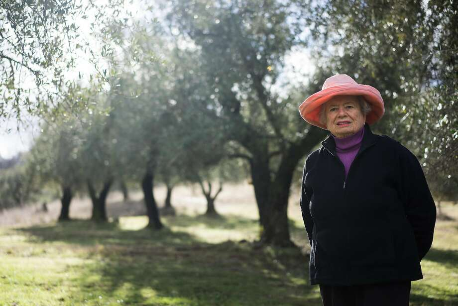 Susan Bragstad poses for a portrait at Amador Olive Oil in Jackson, Calif on Friday, Jan. 15, 2016. Bragstad started making olive oil in the late 1990s. Photo: James Tensuan