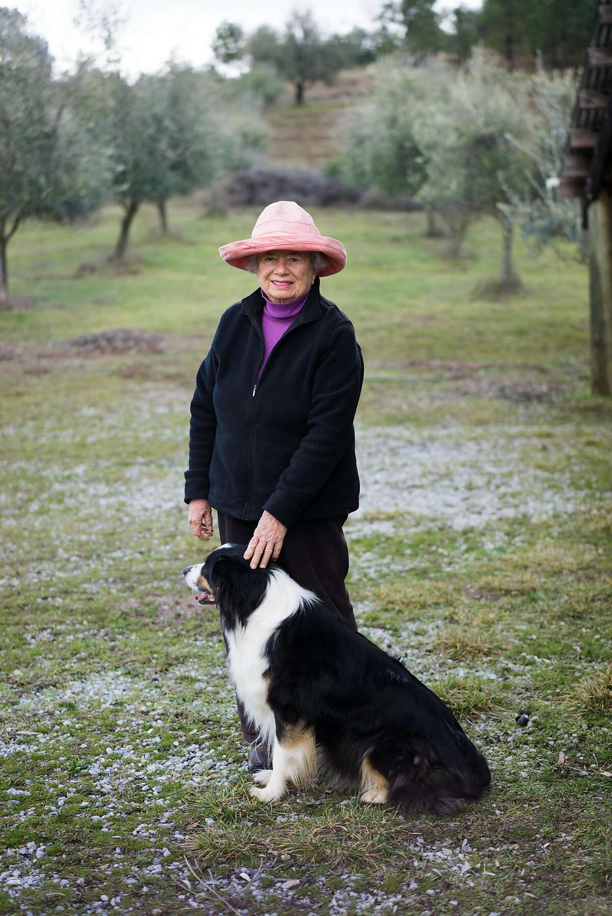 Susan Bragstad poses for a portrait at Amador Olive Oil in Jackson, Calif on Friday, Jan. 15, 2016. Bragstad started making olive oil in the late 1990s.