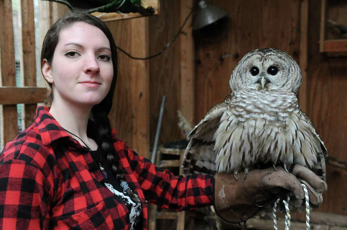 Shaker High student Malerie Muratori with and owl named Jasper in the barred owl habitat at Whispering Willow Wildcare on Saturday Jan. 16, 2016 in Guilderland, N.Y. (Michael P. Farrell/Times Union)