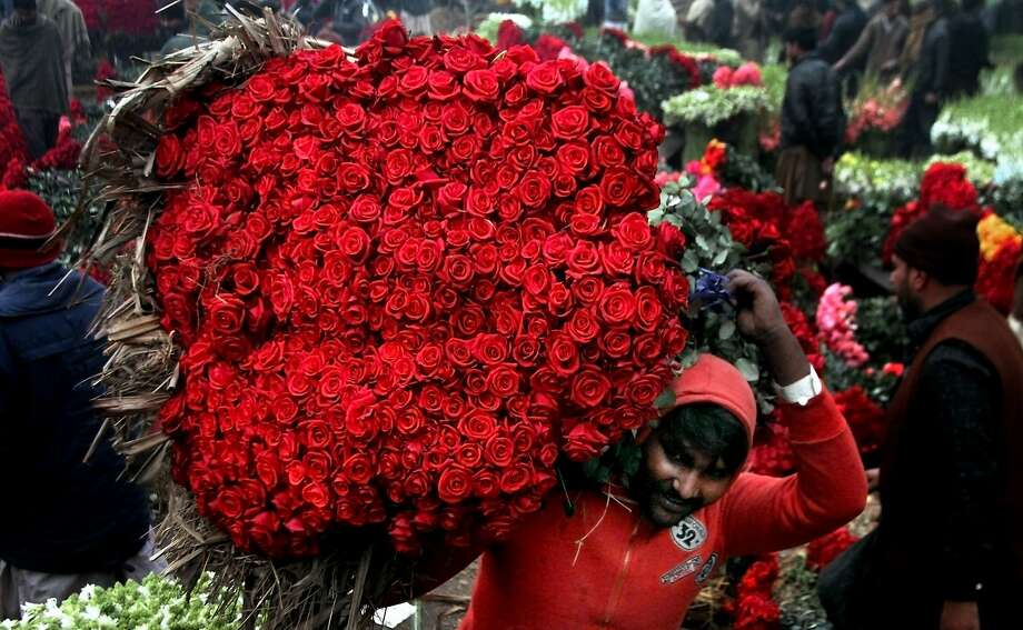 A laborer carries a bundle of red roses at a wholesale flower market in Lahore, Pakistan, Sunday, Jan. 17, 2016. Photo: K.M. Chuadary, Associated Press