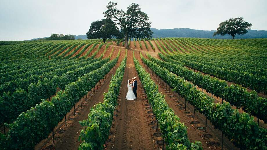 Daniel Bowen, owner of Matter Video, used a drone to capture aerial footage of the stunning natural surroundings of this Wine Country wedding. Photo: Matter Video