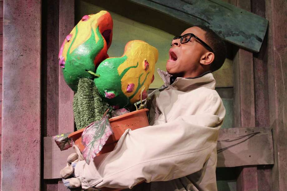 """Tre'von Jones portrays Seymour in Lamar Consolidated High School's production of """"Little Shop of Horrors."""" The man-eating plant in the show features the talents of CJ Nickerson, who provides its voice, and Olivia Knuckols, who works the puppet.  Photo: Lamar Consolidated High School"""