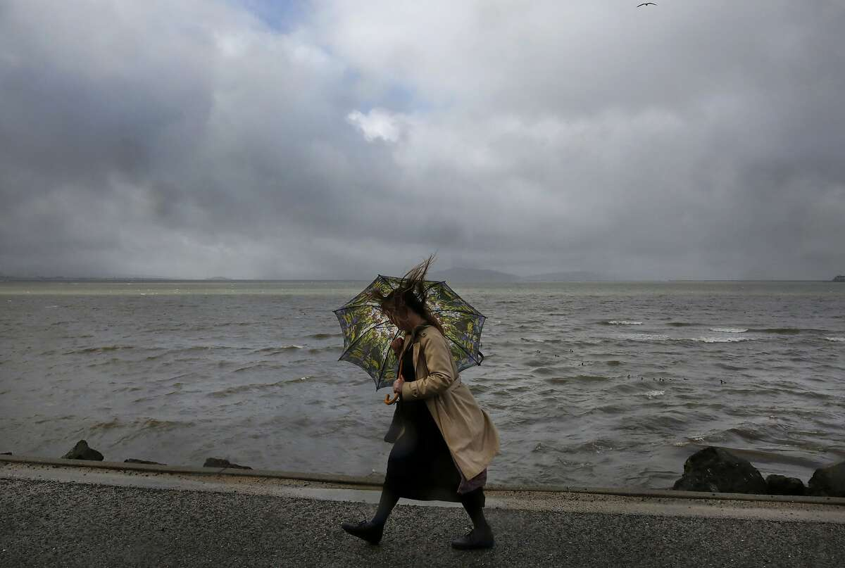 Lisa Lippincott tries to shelter herself from the rain as she walks to work on the San Francisco Bay Trail along W. Frontage Road Jan. 19, 2016 in Berkeley, Calif.