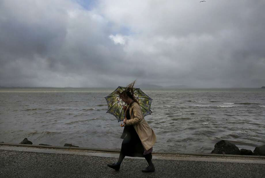 Lisa Lippincott tries to shelter herself from the rain as she walks to work on the San Francisco Bay Trail along W. Frontage Road Jan. 19, 2016 in Berkeley, Calif. A series of rainstorms headed to the Bay Area are forecast to bring at least 6 inches of rain in 10 days. Photo: Leah Millis, The Chronicle