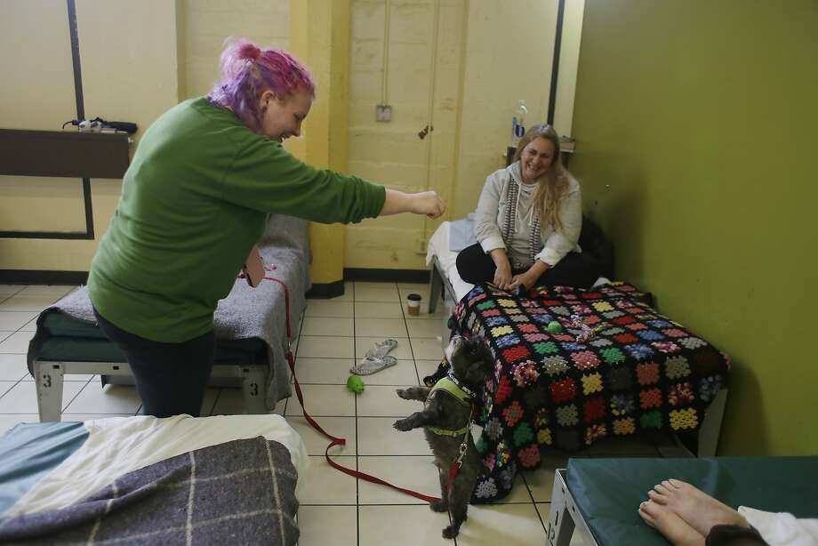 Tascha Cook (l to r), homeless client, gives her dog Rocky a treat as they spend time together at the long term shelter on the women's floor as neighbor Lynn Anderson watches at Episcopal Community Services Next Door Shelter on Tuesday, January 19, 2016 in San Francisco, Calif. Photo: Lea Suzuki, The Chronicle