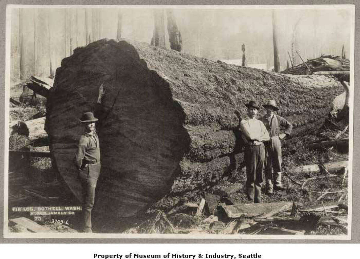 """""""In the early 1890s, about a third of Washington's population worked in logging camps, sawmills, shingle mills, and in factories making wooden doors and window sashes. Nearly 1.2 billion board feet of lumber and almost 1.9 billion shingles were shipped from the state in 1892. Huge trees still filled the coastal forests, and no one thought the supply would ever run out. This 1890s photo shows a giant fir log at the Huron Lumber Company in Bothell. The town got its start in 1886, when David Bothell started a lumber camp and shingle mill in the area."""" -MOHAI. Photo courtesy MOHAI, Seattle Historical Society Collection, image number shs1039."""