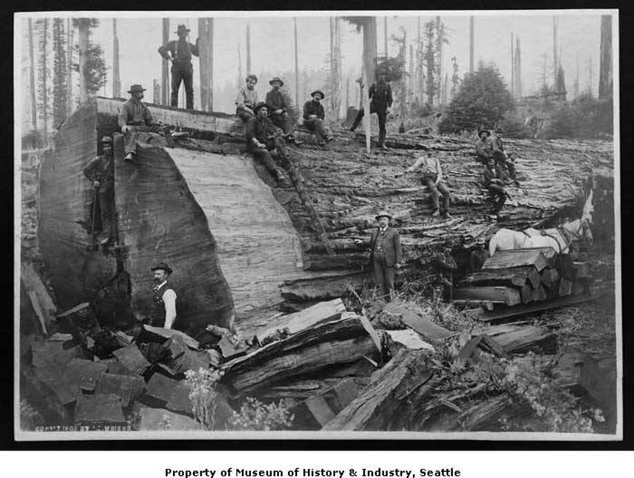 Photos A Tale Of The Northwests Logging Past Seattlepicom - Us lumber industry map 1900