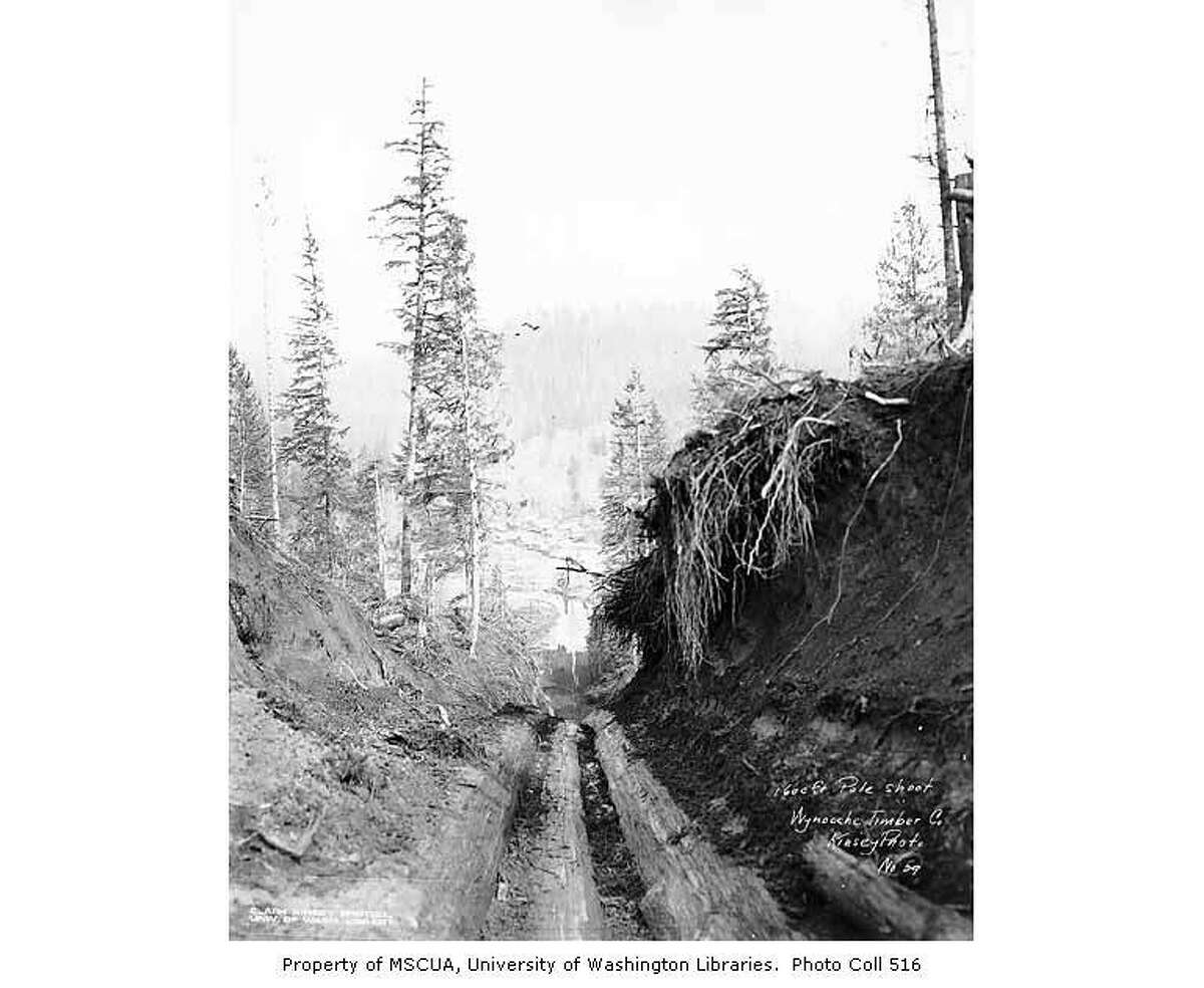 """""""The Wynooche Timber Company began operations ca. 1913 with headquarters in Hoquiam and logging operations in Montesano. It was named for Wynooche Valley in northeast Grays Harbor County. Wynooche Timber Company was bought out by Schafer Brothers Logging Company ca. 1927. The skid road, or skidway, was constructed of ten foot logs, 10 to 20 inches in diameter and the logs were spaced 9 feet apart and partly buried in the ground to make them rigid. The tip of the skids were adzed to form a trough for the logs to ride in and when they became worn down a hardwood block, called a glutt, was mortised into the worn part. Caption on image: 1600 ft. pole shoot. Wynooche Timber Co. Kinsey Photo. No. 59."""" -UW. Photo courtesy University of Washington Special Collections."""