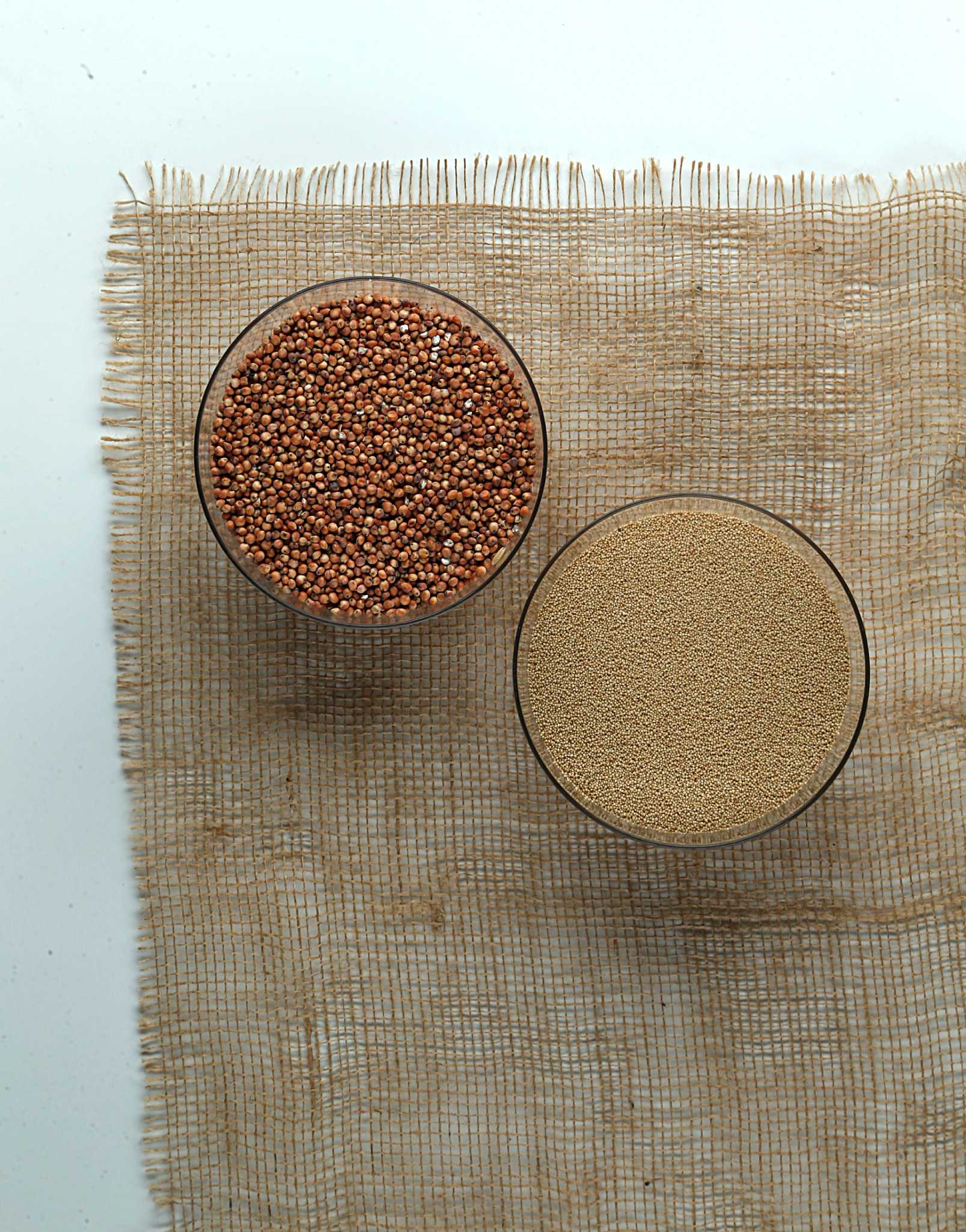 Harvest backyard grain crops to make tasty treats in the kitchen ...