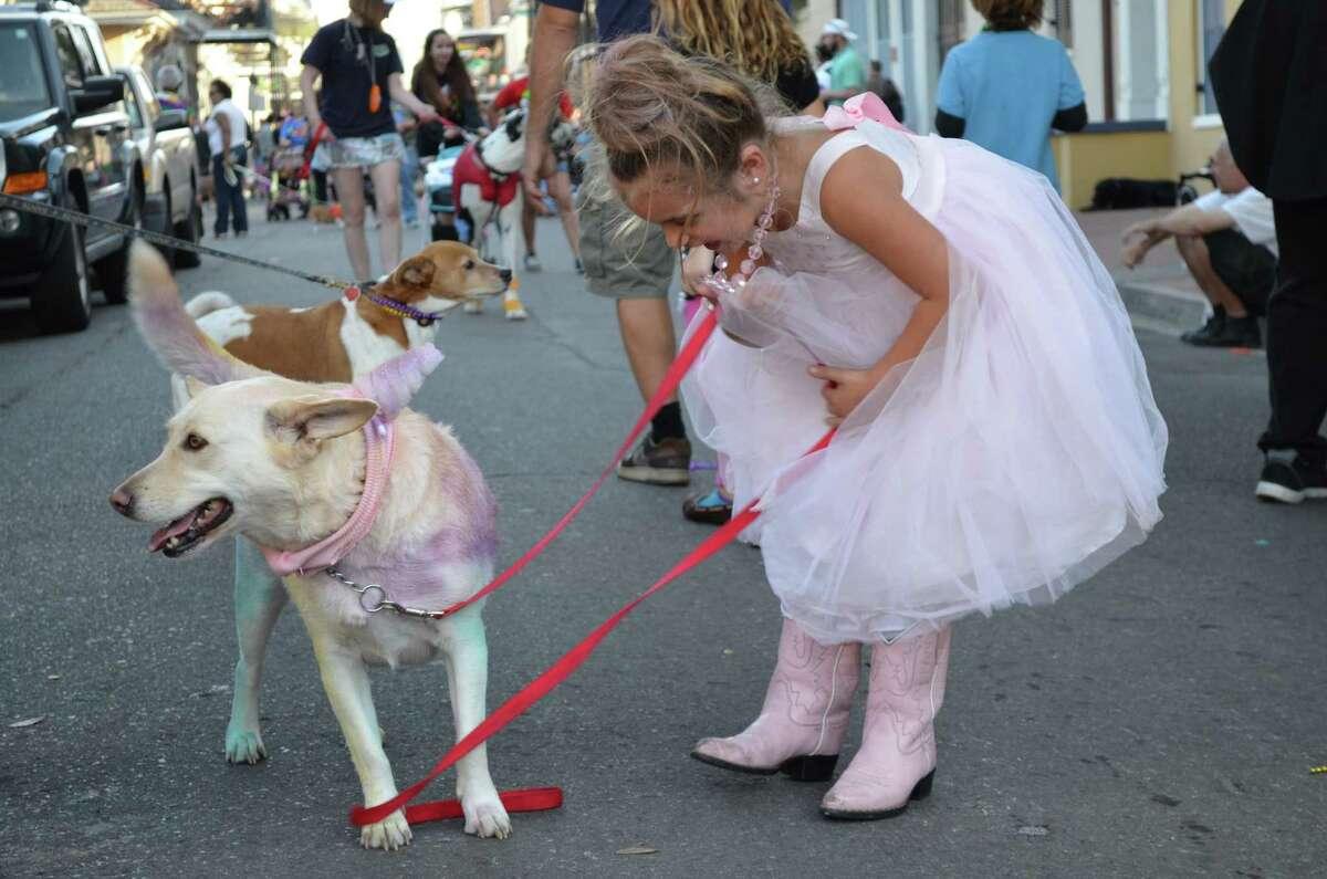 Barkus Ballerina in New Orleans