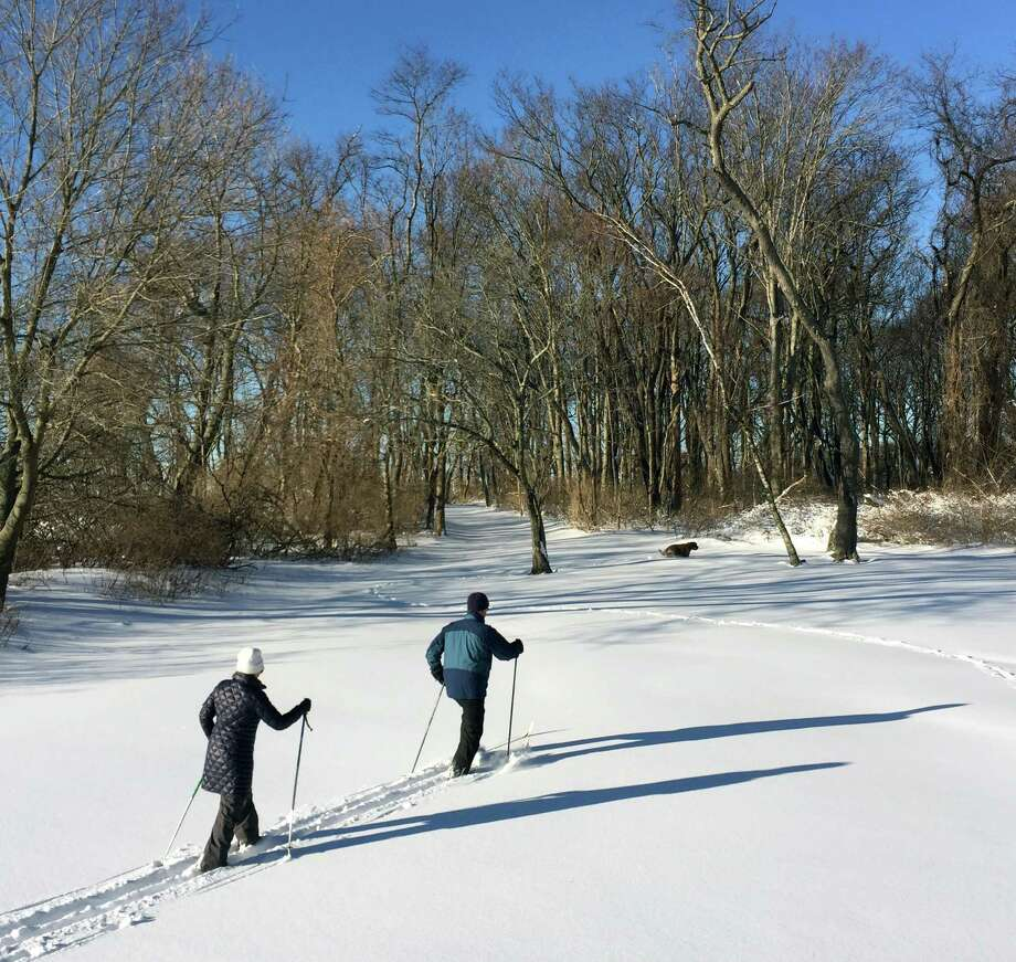 Stephen and Carolyn (left) Westerberg, husband and wife of Riverside, cross country ski with their dog Matouk, far right, after the winter storm that dumped more than a foot of snow in Greenwich Point, Conn., Sunday morning, Jan. 24, 2016. Photo: Bob Luckey Jr. / Hearst Connecticut Media / Greenwich Time