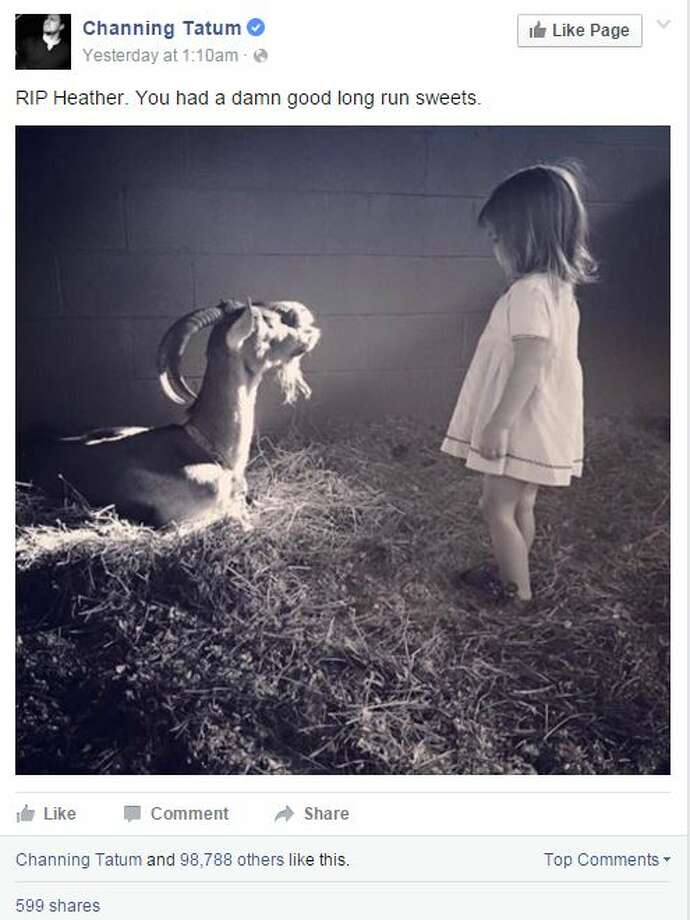 Channing Tatum shared this photo of his daughter, Everly, alongside the family goat, Heather, who recently died.