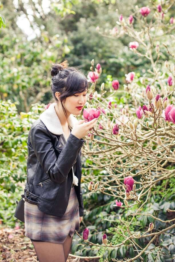Explore the blooming magnolias in the San Francisco Botanical Garden last year. 2016 was a banner year for the flowers as the trees are filled with buds. Photo: Kathryn Rummel.