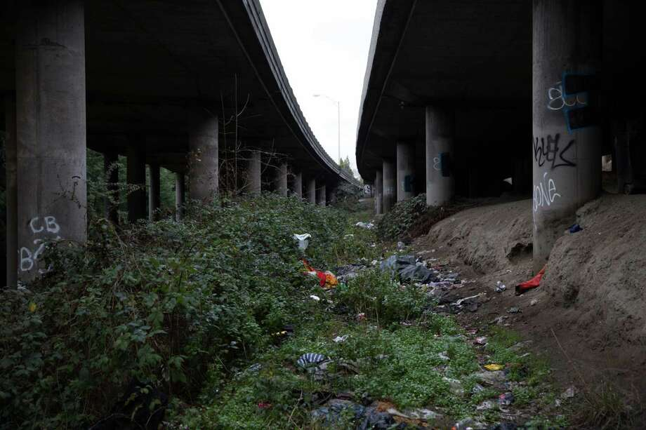 "Seattle's notorious homeless encampment known as ""The Jungle"" was the scene of a deadly shooting Tuesday night. Garbage and belongings are scattered about the homeless encampment Wednesday under Interstate 5. Photo: GRANT HINDSLEY, SEATTLEPI.COM / SEATTLEPI.COM"