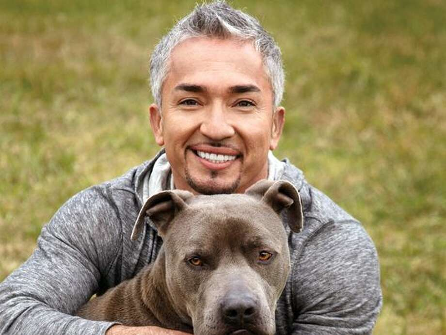 Cesar millan dog whisperer how to contact