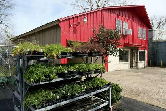 Farmstead: Grow & Eat Wednesday, Jan. 27, 2016, in Houston, Texas. ( Gary Coronado / Houston Chronicle )