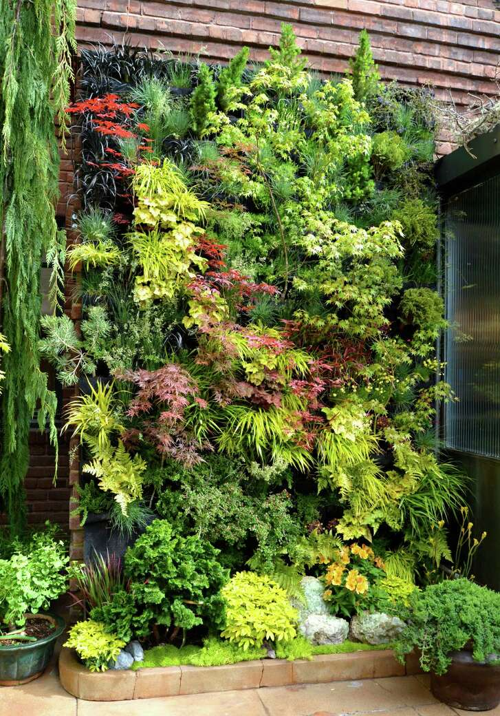 Vertical gardens can help create visual interest in small backyards.