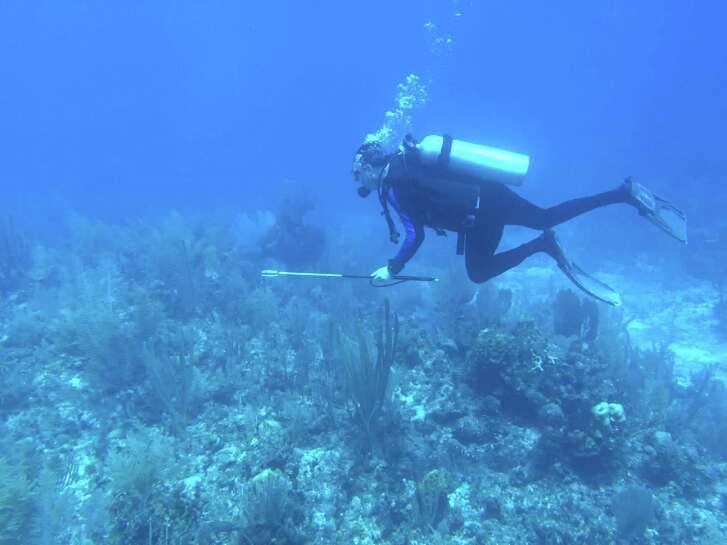 Josh White, armed with a spear, hunts lionfish near Turneffe Island Resort in Belize.