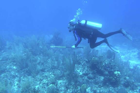 Josh White, armed with a spear, hunts lionfish near Turneffe Island Resort in Belize.