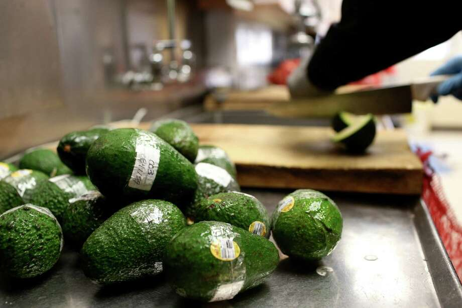 U.S. Customs and Border Protection agriculture inspectors cut open avocados from a sample bag and look for insects at the Pharr-Reynosa International Bridge, Tuesday, Jan. 19, 2016. The avocados are labeled with information on the individual farms they were grown. With new infrastructure built in Mexico, growers from that country have seen that it is less expensive to ship their produce through Texas, especially, Pharr, to reach markets in the Northern states. The Pharr port is on trend to surpass Nogales, Arizona as the single largest entry point for imports of Mexican fresh produce. Photo: Jerry Lara / San Antonio Express-News / © 2016 San Antonio Express-News