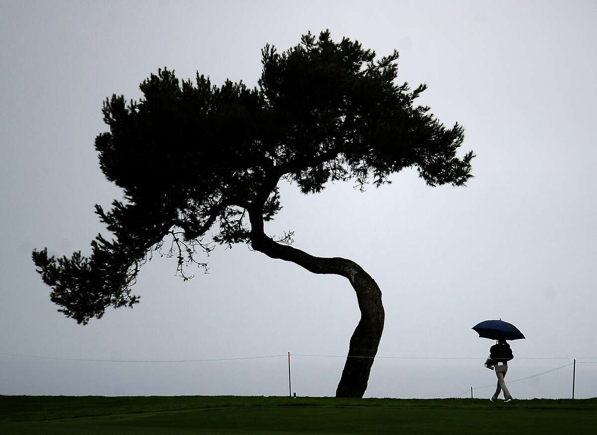SAN DIEGO, CA - JANUARY 31: A spectator walks off the course as wind and rain delay play during the final round of the Farmers Insurance Open at Torrey Pines South on January 31, 2016 in San Diego, California. (Photo by Donald Miralle/Getty Images)