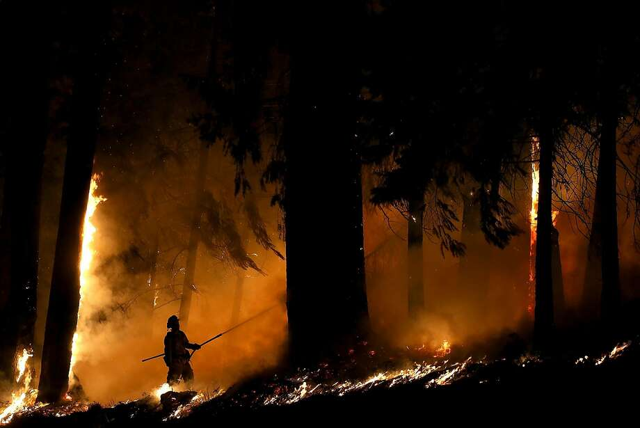 FRESH POND, CA - SEPTEMBER 17:  A firefighter monitors a backfire as he battles the King Fire on September 17, 2014 in Fresh Pond, California. The King fire is threatening over 1,600 homes in the forested area about an hour east of Sacramento and has consumed over 18,544 acres. The out of control fire is 5 percent contained.  (Photo by Justin Sullivan/Getty Images) Photo: Justin Sullivan, Getty Images