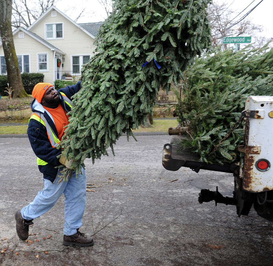 Disposing Of Christmas Trees: Stamford Continues To Pick Up Christmas Trees