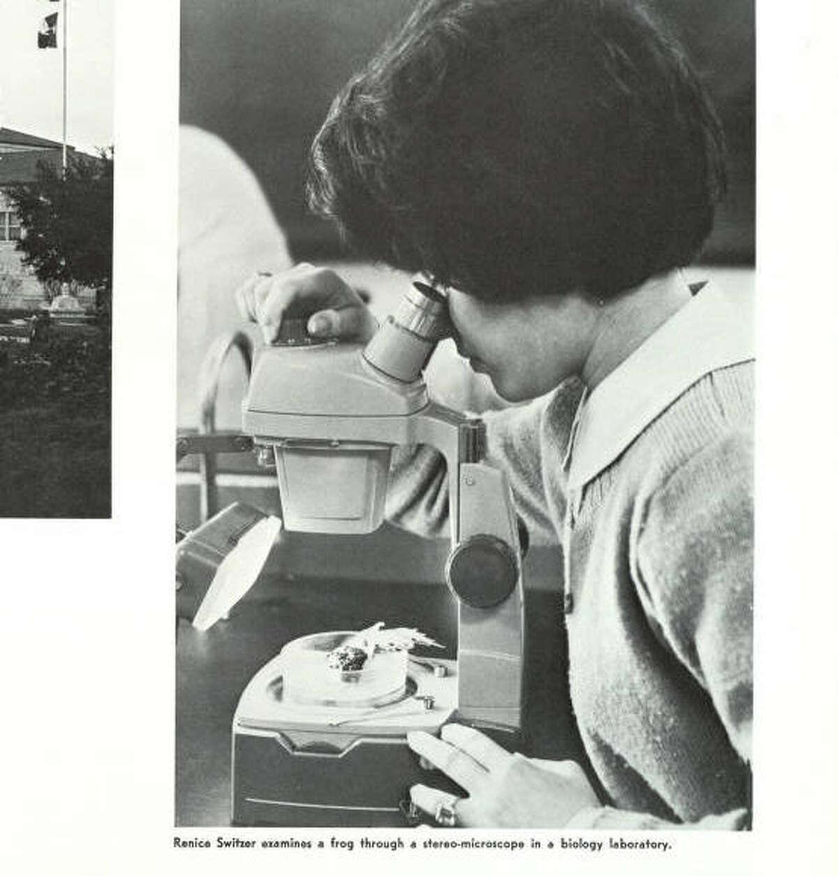 Yep, frogs were still gross/awesome under a microscope in 1966. Via Houstonian 1966.