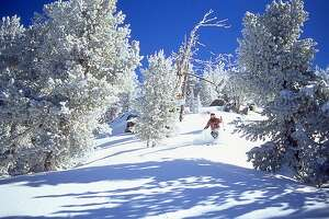 Male skier skiing downhill on powder snow, Lake Tahoe, California, USA