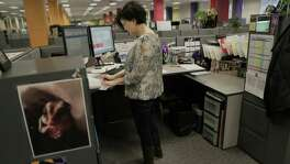Shelli Groshans, an advertising sales assistant, works at her standing desk at the St. Louis Post-Dispatch. Groshans divides her time between sitting and standing. She says it has helped her with her back pains.