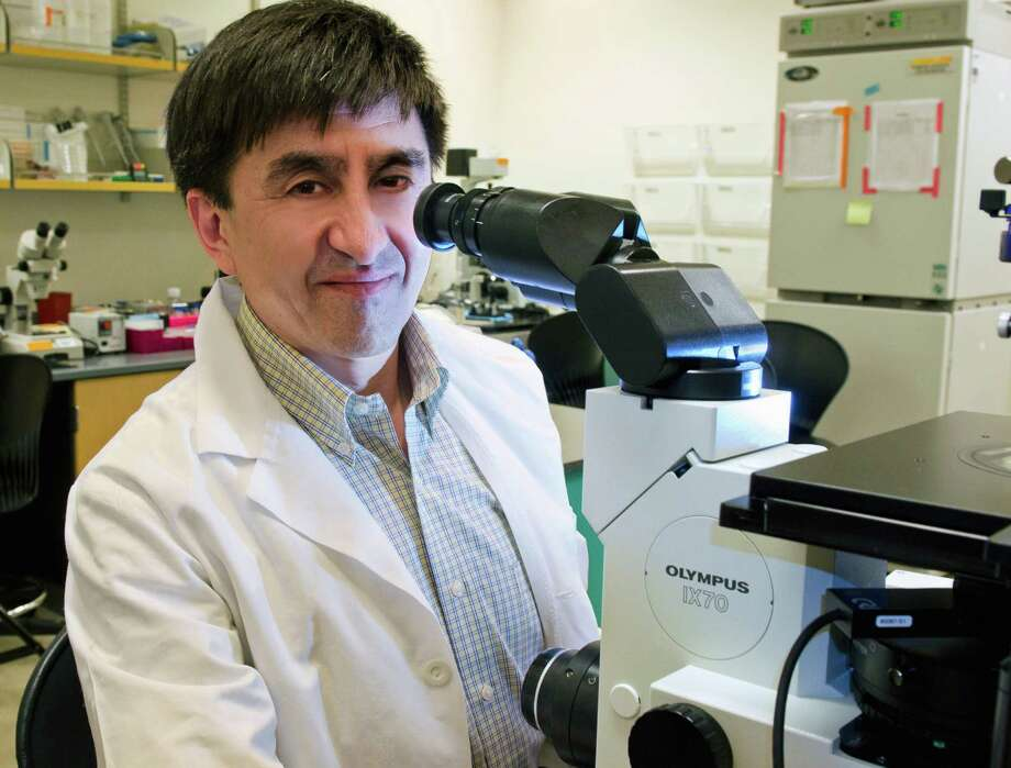 This photo provided by Oregon Health & Science University Photography shows Dr. Shoukhrat Mitalipov of the Oregon Health & Science University in Portland, Ore. Mitalipov hopes to test a technique that will use the DNA of three people, one man and two women, to create embryos, in the quest to prevent mothers from passing debilitating genetic diseases to their babies. (Oregon Health & Science University Photography via AP) Photo: HONS / Oregon Health & Science Universi