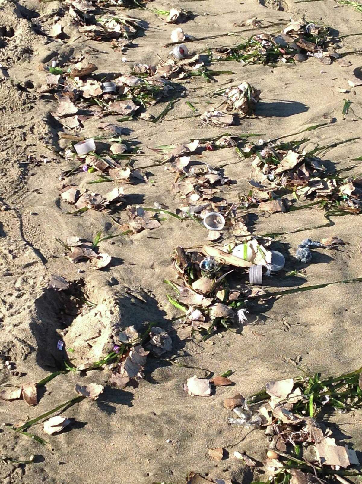 Park officials cleaned up debris that washed ashore Sunday following the Macy's fireworks show.