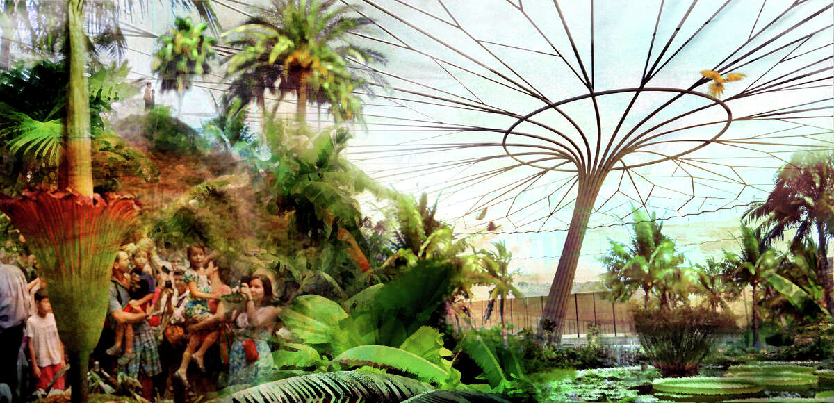 A conservatory takes inspiration from the vein pattern of the Victoria lily. Inside this enclosure, the conservatory would display species native to the Amazon region.